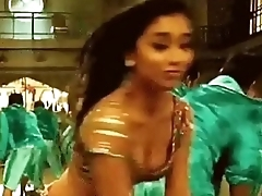 Shriya Hot Nipple Slip HD